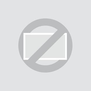 Écran 17pouces (4:3) - Dalle